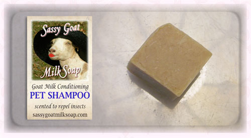 pet-shampoo-scented-marble-photo